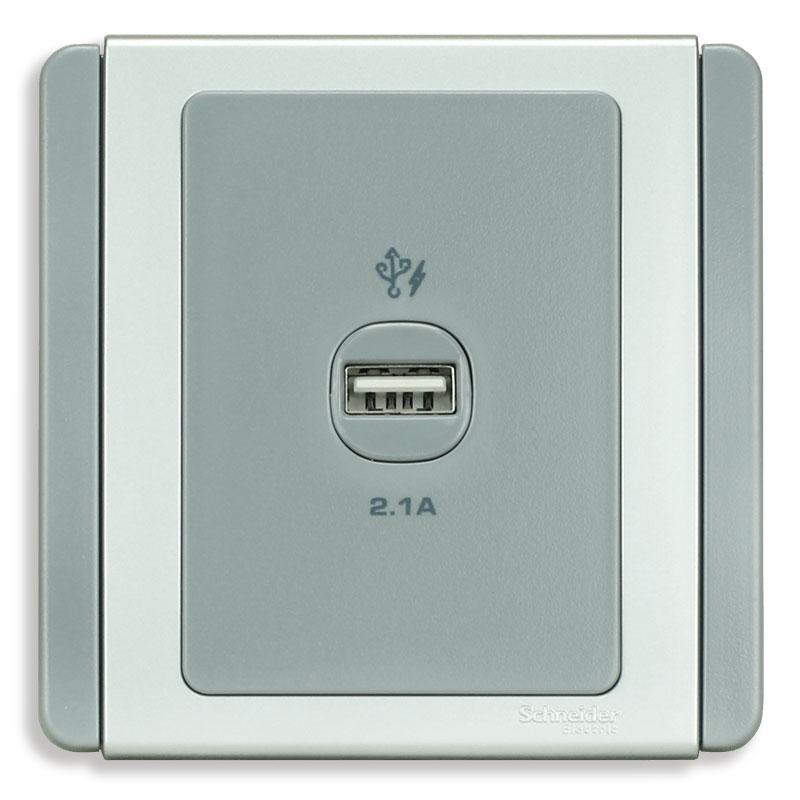 E3031USB_GS_G19 Bộ ổ sạc USB đơn, màu xám bạc