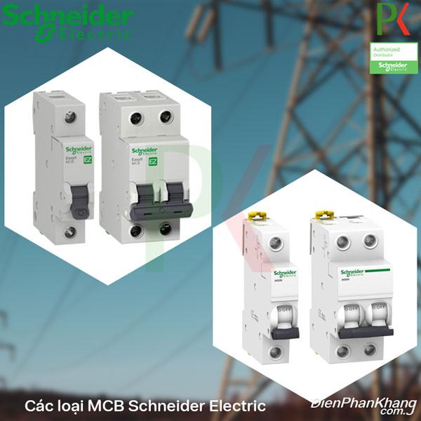 Aptomat hãng Schneider Electric