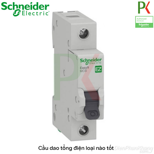Cầu dao điện tổng của hãng Schneider