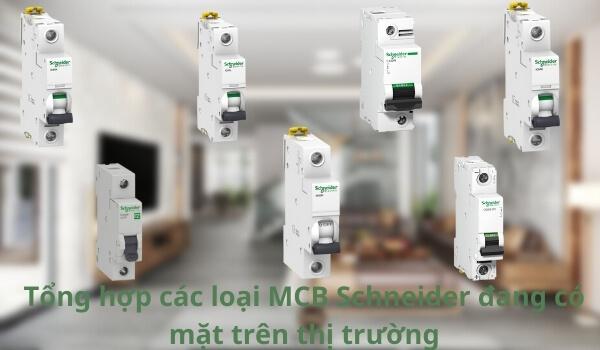 tong-hop-cac-loai-mcb-schneider-dang-co-mat-tren-thi-truong8